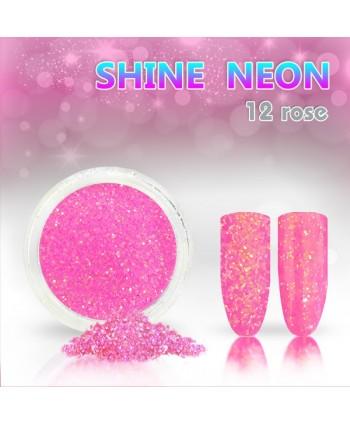 Neónový glitrový prášok 12 shine neon rose