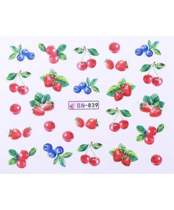 Vodonálepky s motívmi ovocia BN-839