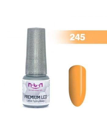 NTN Premium Led gel lak 245...