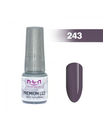 NTN Premium Led gel lak 243...