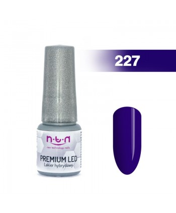NTN Premium Led gel lak 227...
