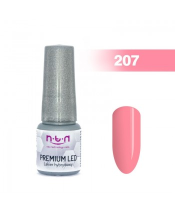NTN Premium Led gel lak 207...