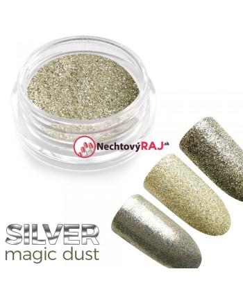 Prášek holografický Silver...